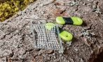 EXC SET FOR BOILIES WITH STOPPER